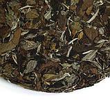 Белый чай Бай Му Дань / Белый пион (прессованный), фото 2