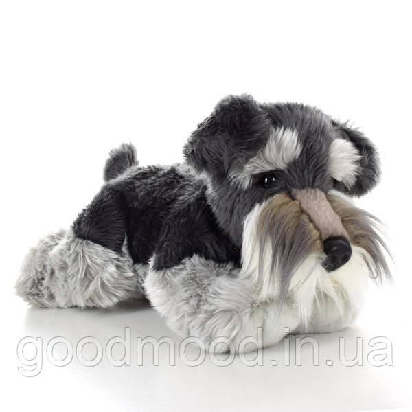 М'яка іграшка SD5454 собачка, шнауцер, 35 см.