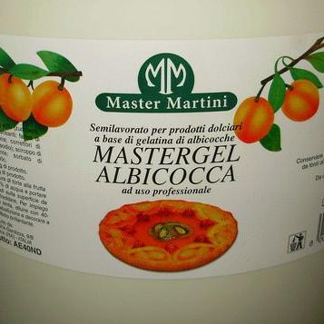 Гель кондитерський Mastergel Абрикос Master Martini, фото 2