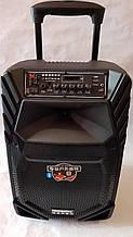 Портативна Акустика A12-8 з радіомікрофонами 150W (FM/USB/Bluetooth)