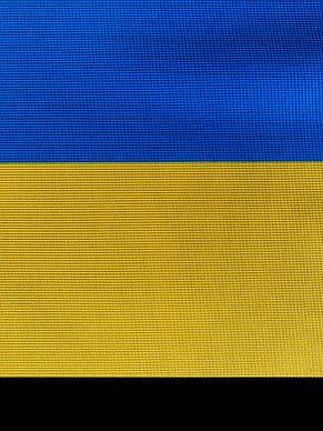 Флажная сетка (желто-голубая, полиэстер) - 90 г/м2, фото 2