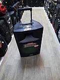 Портативная акустика с микрофонами Temeisheng SL15-04 /400W (USB/Bluetooth/Пульт ДУ/FM), фото 6