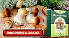 🔥 Диво грибниця, готовий засіяний міцелій для вирощування грибів вдома 6 видів 🔥, фото 5