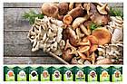🔥 Диво грибниця, готовий засіяний міцелій для вирощування грибів вдома 6 видів 🔥, фото 4