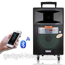 Портативна акустика з мікрофонами Temeisheng SL12-04 /250W (USB/Bluetooth/Пульт ДУ/FM)