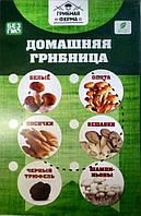 🔥 Чудо грибница Шампиньоны, Лисички, Вешенки, Опьята, Белые Грибы,Набор Домашняя Грибница выращивание 6 видов
