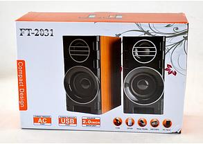 Акустична система - колонки для ПК, ноутбука, нетбука або планшета FT-2031 USB, фото 2