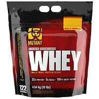 MUTANT Mutant Whey - 4,5 кг - шоколад
