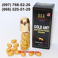 Золотой Муравй Gold Ant - Препарат для потенции, 10табл*6800мг, фото 1