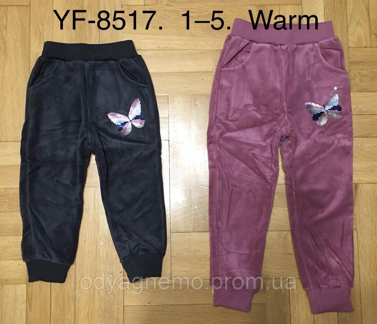 Спортивные велюровые брюки утепленные для девочек F&D оптом, 1-5 лет. Артикул: YF8517