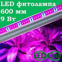 LED фитолампа 600 мм 8 Вт T8-2835-0.6F R:B=4:2 светодиодная лампа сине-красная для растений