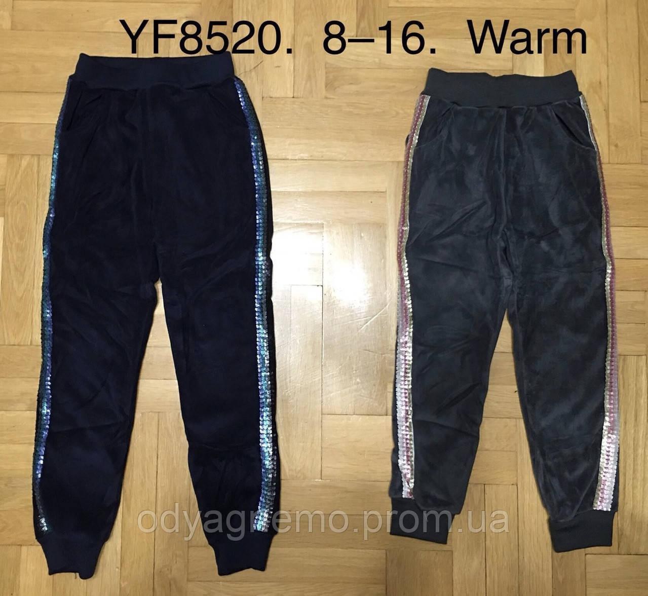 Спортивные велюровые брюки утепленные для девочек F&D оптом, 8-16 лет. Артикул: YF8520