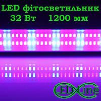 LED Фитосветильник 1200 мм 32 Вт T8-IP20-1.2L 32W R:B=4:2 4 красных 2 синих