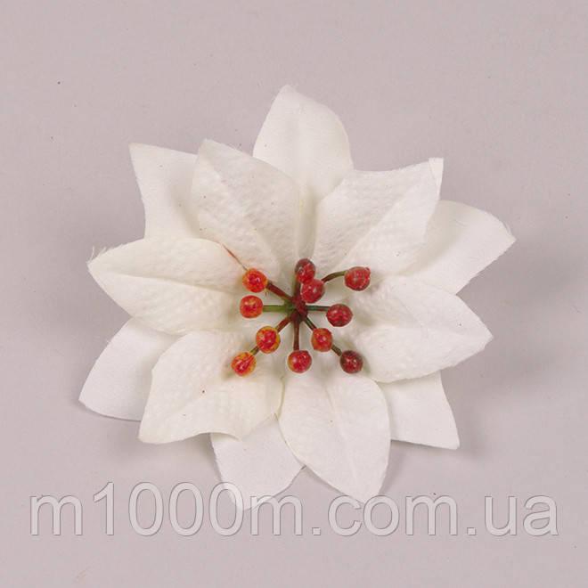 Рождественник (Пуансетия) Белая 75598
