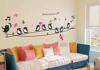 Интерьерная наклейка на стену или окно - декоративные наклейки  птички