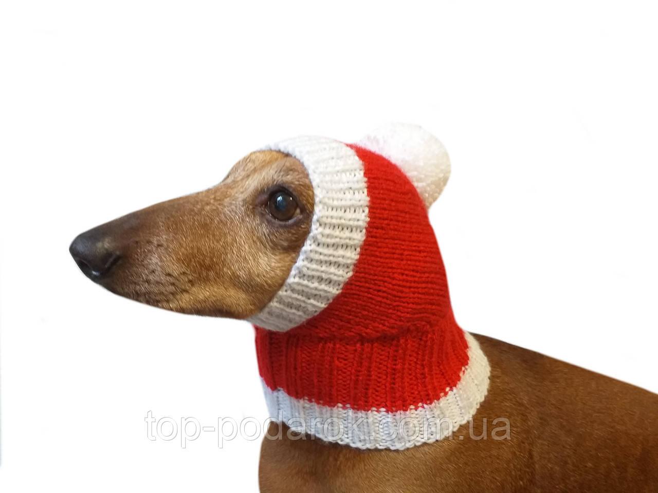 Новогодняя шапка для таксы или маленькой собаки