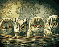 Художественный творческий набор, картина по номерам Маскировка, 50x40 см, «Art Story» (AS0556)