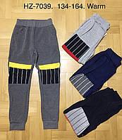 Спортивные брюки для мальчиков Active Sports оптом, 134-164 рр. Артикул: HZ7039, фото 1
