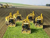 Перевозка зерновых и масличных культур