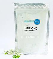 Альгінатна маска для обличчя c гіалуронової кислотою Lindsay Premium Hyaluroniс Modeling Mask Pack 240 г, фото 1