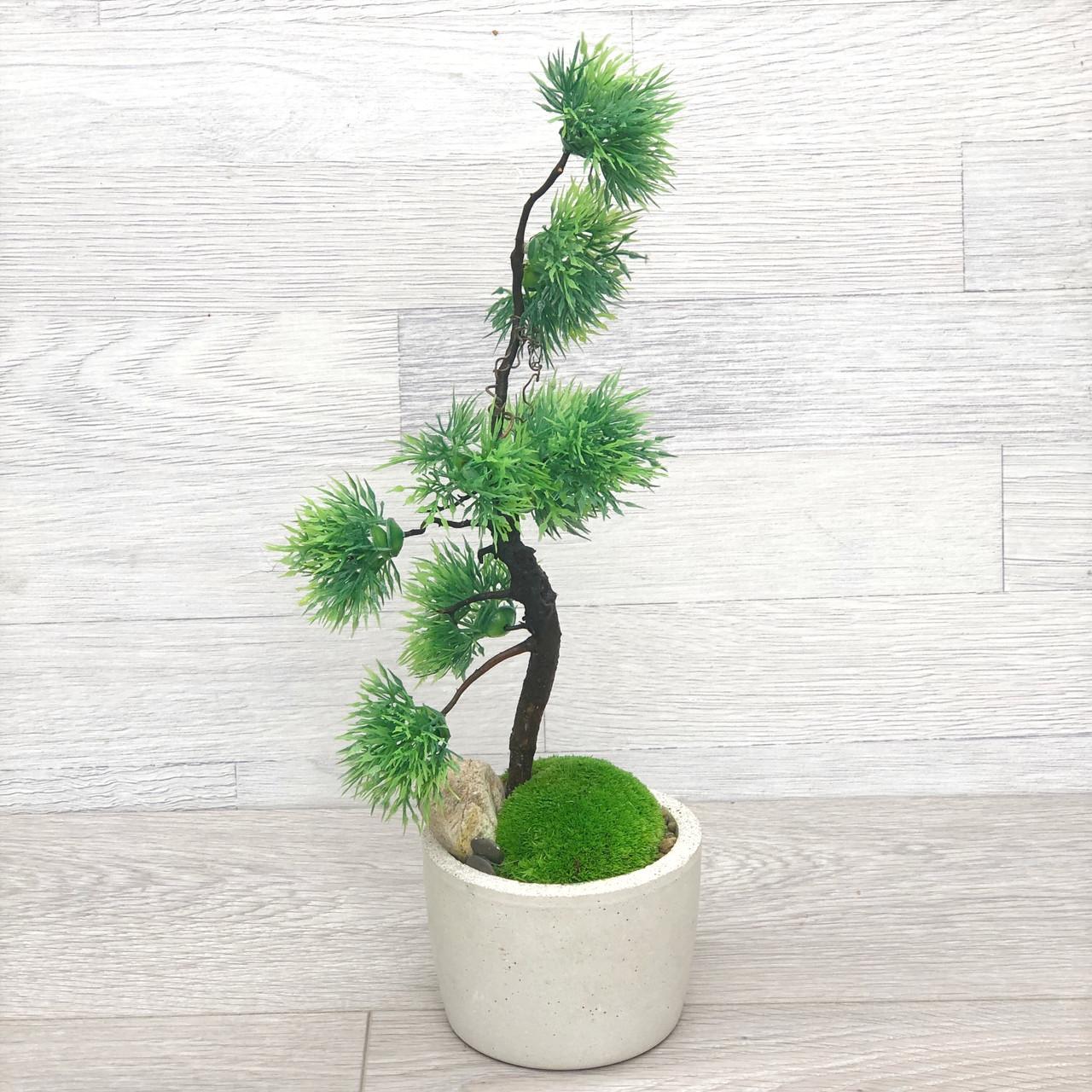 Дерево декоративное ручной работы, бонсай