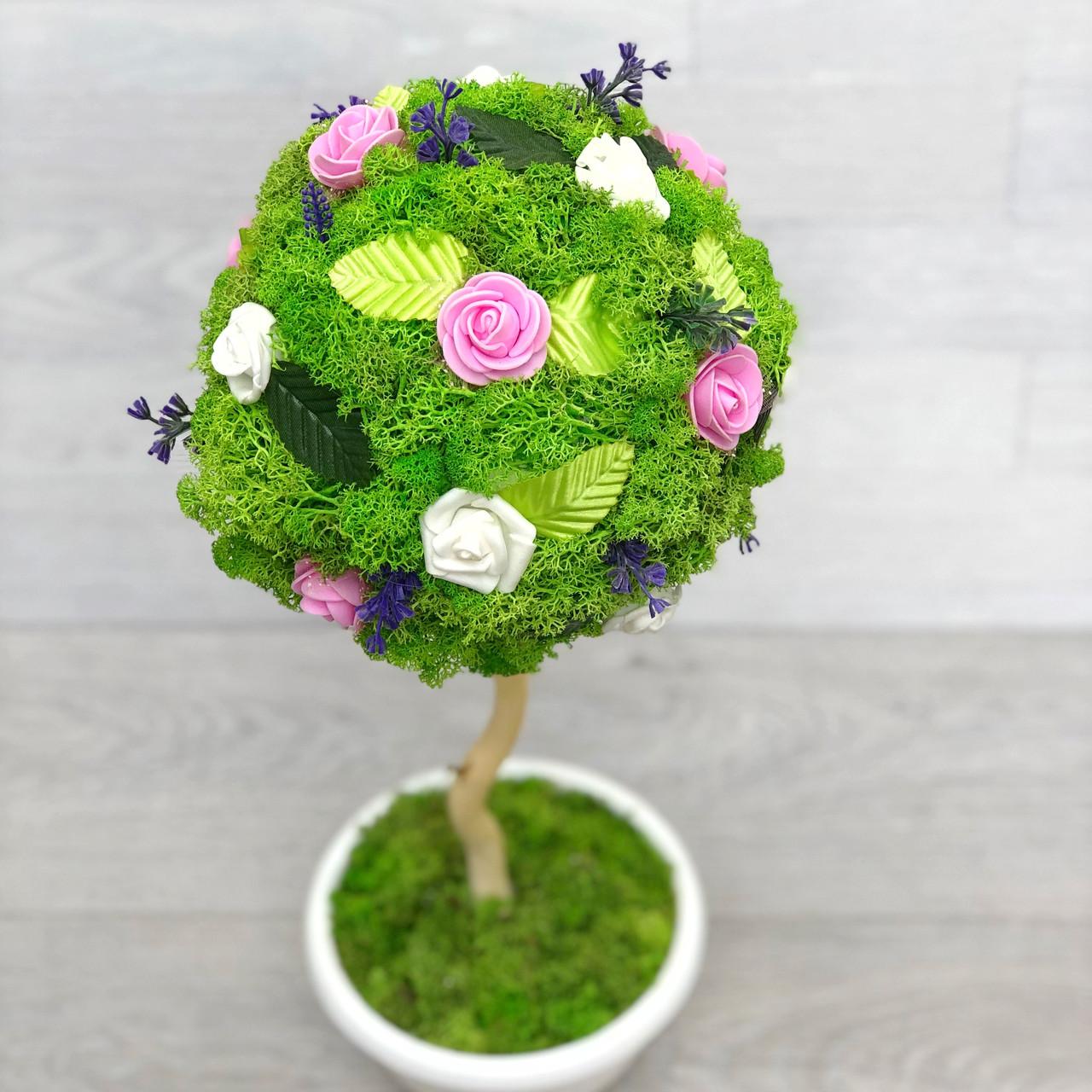 Декоративное дерево, свадебный топиарийиз стабилизированного мха