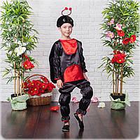 Карнавальный костюм божьей коровки мальчика, фото 1