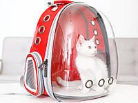 Рюкзак переноска для кошки собаки Красный, сумка для кота собак и домашних животных прозрачный рюкзаки с