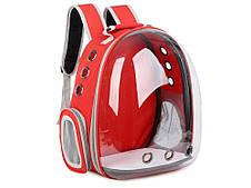 Рюкзак переноска для кішки собаки Червоний, сумка для кота собак і домашніх тварин прозорий рюкзаки з ілюмінатором перенесення Cosmopet Upet AnimAll, фото 3