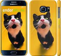 "Чехол на Samsung Galaxy S6 G920 Чёрно-белый кот на жёлтом фоне ""139c-80"""