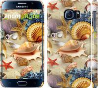 "Чехол на Samsung Galaxy S6 G920 Морские ракушки ""2244c-80"""