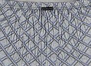 Мужские трусы семейные х/б Doremi без пуговиц, эконом, Турция-Украина, 6, 7, 8 размеры, фото 5