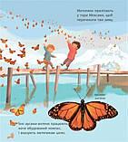 """Книга """"Дивовижні мандрівки тварин"""", Пакхем Кріс   Ранок, фото 4"""