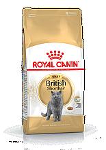 Сухой корм Royal Canin British Shorthair Adult для взрослых кошек породы Британская короткошерстная 2 кг