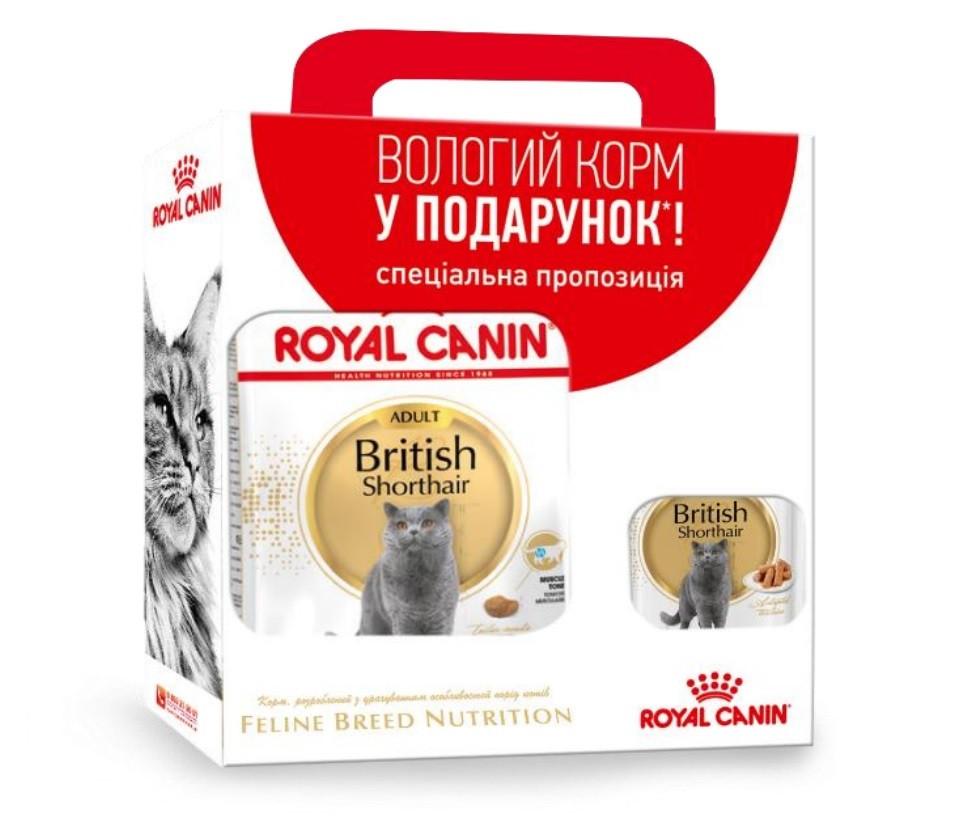 Набір сухий корм Royal Canin British Shorthair для кішок породи Британська короткошерста 2 кг + 3 пауча*85 г