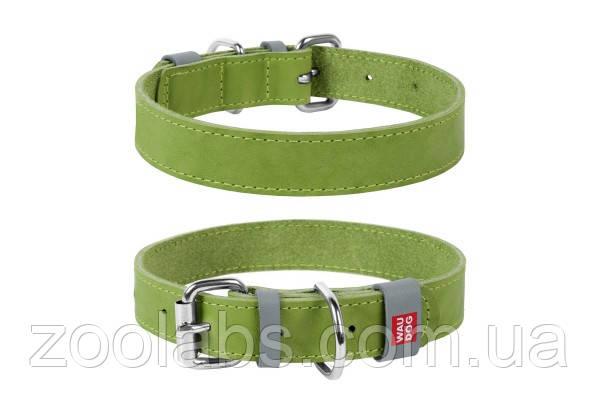 Ошейник для собак кожаный Collar Waudog (21-29 см, мелкие породы)