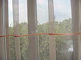 Комплект шторки с тюлью  до подоконника Завитки, фото 6
