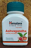 Ashvagandha Himalaya Ашваганда 60 таб Хималая истощение, переутомление, слабость, бессонница, возраст, склероз