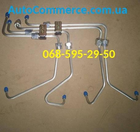 Трубки топливные ТНВД ХАЗ 3250 Антон, фото 2