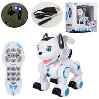 Интерактивная собака-робот Dog K10 на радиоуправлении
