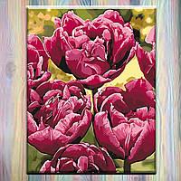 """Картина по номерам ТМ """"Идейка"""", холст на подрамнике, 40х50, Цветы """"Изысканная элегантность"""", без коробки"""