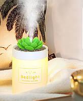 Увлажнитель воздуха 330 мл Bedlight с подсветкой. Ультразвуковой увлажнитель воздуха Кактус локальный