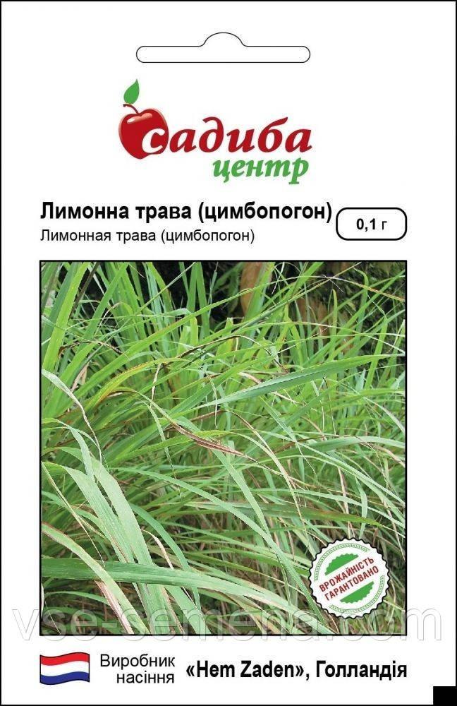 Лемонграсс (Лимонная трава), семена