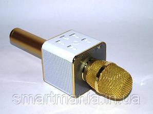 Микрофон с функцией Караоке Q7 StreetGo Bluetooth Karaoke USB AUX MP3 Player