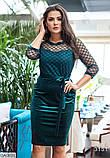 Стильное платье    (размеры 50-56) 0217-43, фото 2