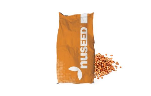 Семена сорго 400x36