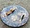 Комплект - «Коловрат» 1 щит + 2 топора + 2 копья - ручная робота, фото 8