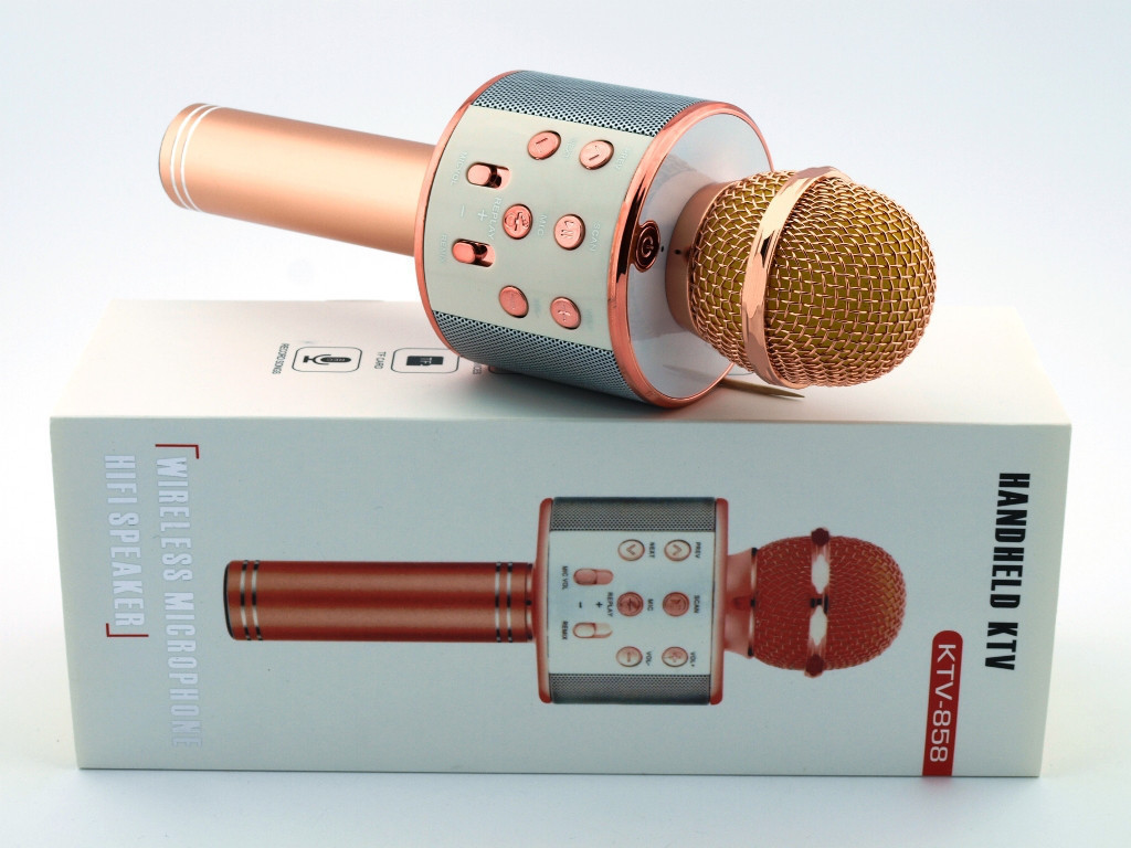 Портативный микрофон -караоке с динамиком Wster WS TyT