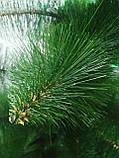 """Сосна искусственная. 2.10 м. высота """"Сосна зеленая"""". Натуральный окрас, фото 2"""
