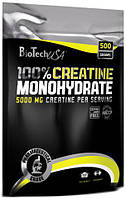 100% Creatine Monohydrate BioTech (500 гр.) ПАКЕТ